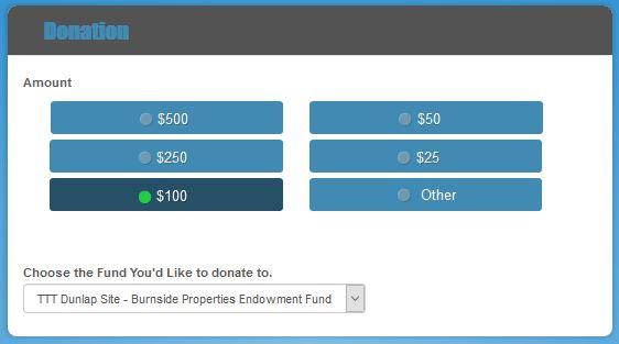 FFF Donation Form Image
